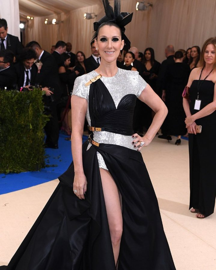 Celine Dion's first time at theMetGala