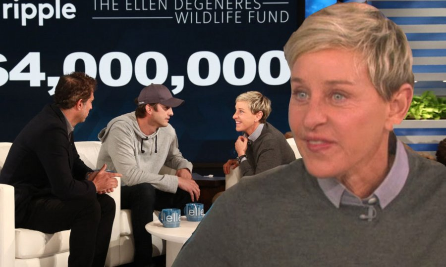 Ashton Kutcher shocks Ellen with  $4m donation to her wildlife fund ( video)