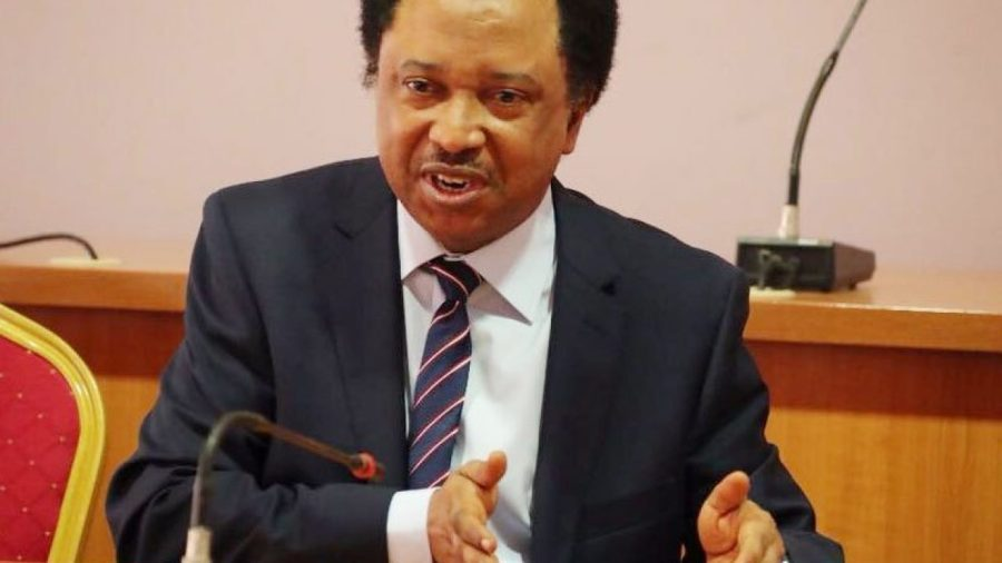Shehu Sani reacts to US govt's visa ban on some Nigerian politics